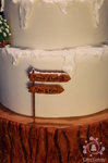 wedding cake rustic, winter, ski